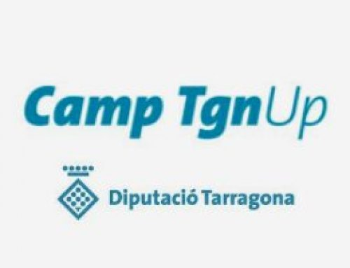 "INSTA completes the formation of the business acceleration program ""Camp Tgn Up"""